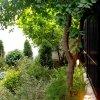 Vila Superba 4 camere Timpuri Noi - locuinta / birou